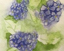 Blue Hydrangea Watercolor Card