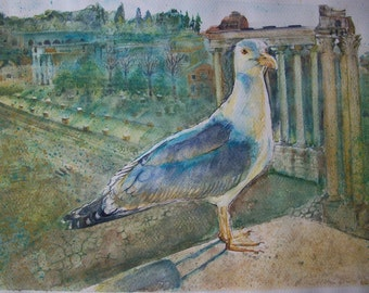 Bird Gull Fori Imperiali Rome watercolor, original painting, watercolor Gull
