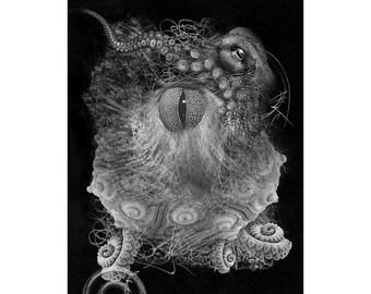 Sea Life #7, Inkjet print  7x9 image on 11x14 archival paper