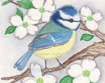 Bird art print. Gift for women. Girls room art. Animal nursery decor. Whimsical watercolor painting. Blue Tit illustration. Bird lover gift