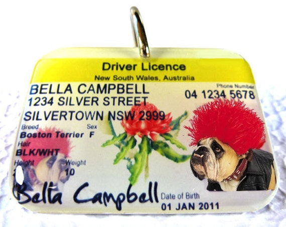 australia driver license nsw new south wales by custompettags. Black Bedroom Furniture Sets. Home Design Ideas