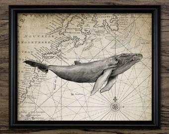 Humpback Whale Print - Whale Illustration - Marine Decor - Whale Art - Nautical Art - Printable Art - Single Print #1008 - INSTANT DOWNLOAD