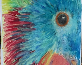 New-Parrot, original watercolor painting-free shipping USA