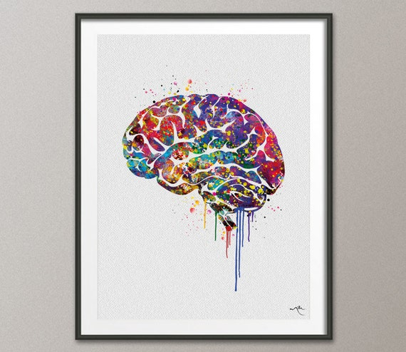 Brain anatomy watercolor print painting wall art giclee for Artwork for wall decoration