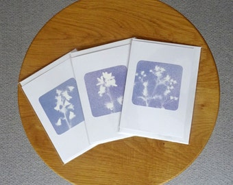 Selection of 3 handmade cards of bluebells and cowparsley in blue/lilac