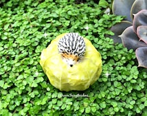 Miniature hedgehog on cabbage, fairy garden hedgehog, fairy garden cabage, miniature garden supplies, fairy garden accessories