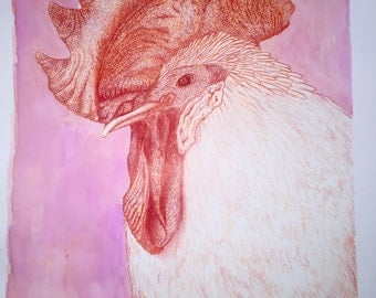Rooster Drawing Image ( with FREE SHIPPING)