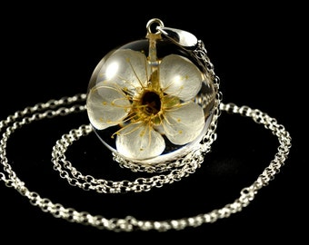 Pendant with natural white cherry flower (Prunus sp.) in the resin ball on a silver chain. Sphere 3 cm. Chain 80 cm.