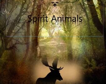 Spirit animals discovery e-guide power totem animals communication shaman