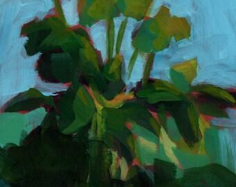 005 - Herb Garden