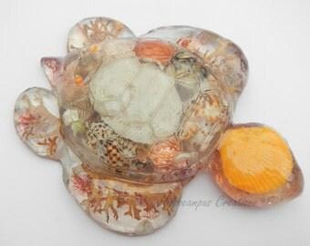 Turtle Sea Cast