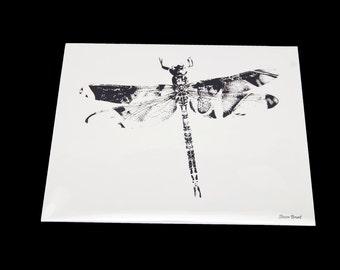 8x10 Dragonfly Print