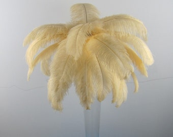 50pcs Elegant Champagne  Ostrich Feather Plume for Wedding centerpieces,Samba accessories
