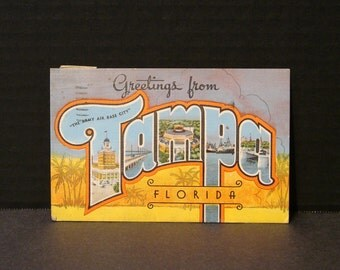 Greetings From Tampa, Vintage Florida Tourism Postcard