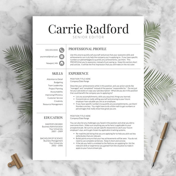 Professional Resume Template Microsoft Word: Classic Professional Resume Template For By LandedDesignStudio