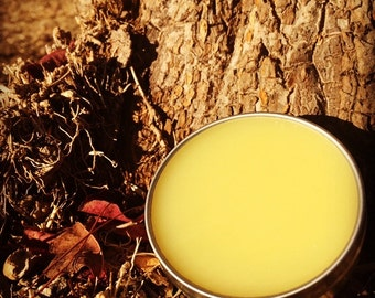 Bump & Bruise Ointment -  Natural Herbal Salve with calendula