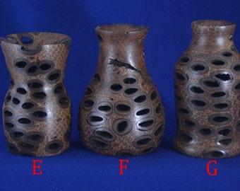Bud/Weed Vase - Banksia Pod