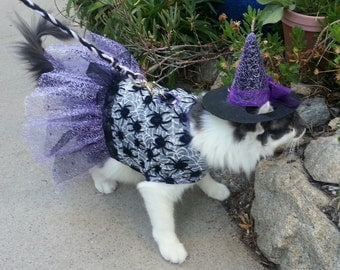 """Cat """"Witch"""" Costume w/Hat - Flocked Spiders"""