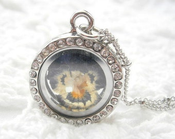Real PANSY mega mini! memory locket, soul window with real flower, pansy necklace, real pansy in a magnetic locket