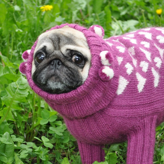 Knitting Pattern For Pug Jumper : Dog Sweater Knit Dog Sweater Sweater for Pug Clothing for dog