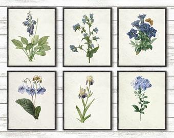 """Blu flowers print Set, Fleurs de Jardin Art, Botanical Art, Glicee art print, Antique Botanical poster, Garden Flowers, 8x10"""", 5x7"""", 11x14"""""""