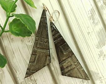 Tribal earrings, Black earrings, Statement earrings, Geometric earrings, Clay earrings, Sterling silver, Eco friendly, Organic, Free gift