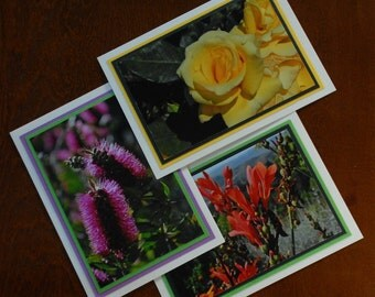 Set of 3 blank greeting cards - bright flowers