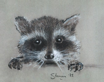 Baby Raccoon 4X6 inches