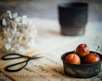 Creative Food Photography, Still Life Food Photo, Plums & Vintage Styling, Fine Art Photograph, Kitchen Wall Art, Fine Art Food Photograph