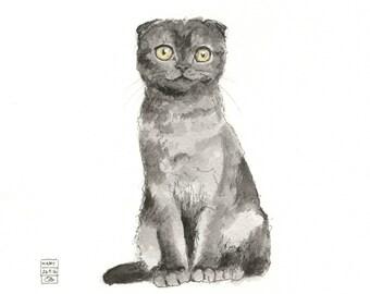 Happy Scottish Fold Cat - fine art print