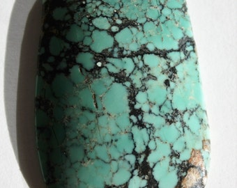 Captivating Chinese Spider Web Turquoise