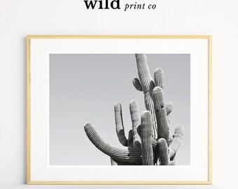 Cactus Print, Desert Cactus Wall Art, Cactus Wall Art, Arizona Desert Photography, Desert Art, Large Digital Art Poster, Modern Decor
