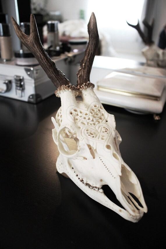 Deer skull carved carving by nicolebartkowiak on etsy