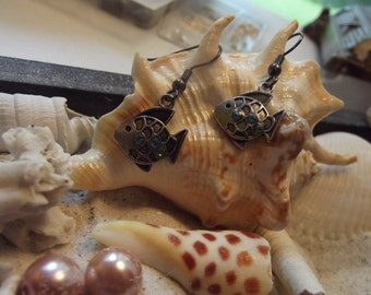 Blue-belly fish earrings