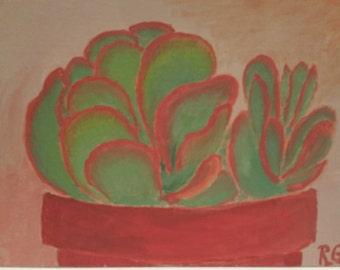 Flapjack Succulent