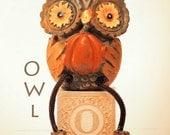 ABC art, owl art, letter photo, nursery art, nursery decor, childs room decor, child room art, letter art, alphabet photo, alphabet art