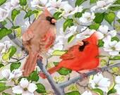 Valentines day Bird PRINT Watercolor Painting / Spring Cardinal pair art animal illustration // Dog wood flower watercolour / red artwork
