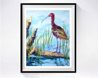 Bird Art Watercolor Original Painting Watercolor large shore bird Ibis nature painting bird Wildlife art painting  realistic artwork B