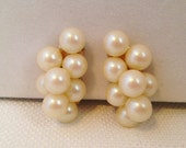 Vintage Beautiful Cluster of Cream Colored Pearls Clip On Earrings ,Yellow Gold Tone Metal, Excellent Condition
