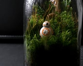 Star Wars Terrarium with BB-8 Episode VII Collectible Limited Edition