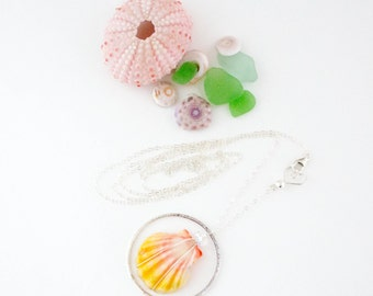 Hawaiian Sunrise Shell Long Necklace - Sterling Silver