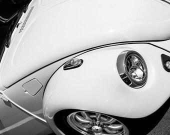 Volkswagen Beetle Curves Car Photography, Automotive, Auto Dealer, Classic, Muscle, Sports Car, Mechanic, Boys Room, Garage, Dealership Art