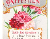 vintage Postcard RED CARNATION Affection Flower 1910 postmark Pretty Art Card