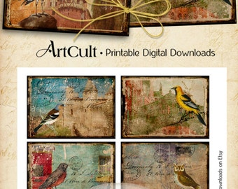 Printable download TATTERED BIRDS Digital Collage Sheet 2.5x3.5 inch Gift Tags Greeting Cards Vintage ephemera images Paper Craft ArtCult