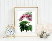 Antique Print Botanical Flowers Bleeding Heart Garden Pink Green Leaves Art Printable Digital Download