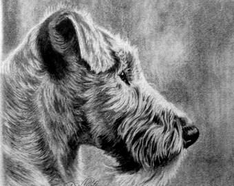 Dog Portrait Dog Sketch Custom EXPRESS Pet Portrait