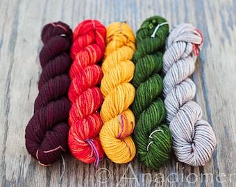 Dia Worsted - Hunting Lodge gradient - Colour Adventures (fibers: superwash merino)