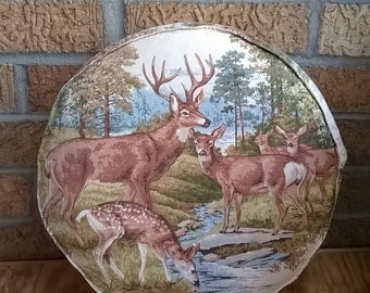 Vintage Paint by Numbers Deer Circle Accent Pillow