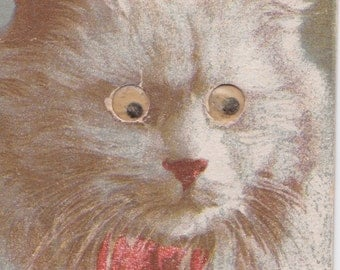 """Vintage """"Cat with Googly Eyes"""" Postcard -- 1940?"""