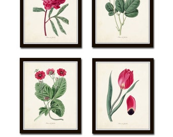 Fleurs de Jardin No. 20, Botanical Prints, Botanical Print Set, Giclee, Art, Vintage Botanicals, Antique Botanicals, Flower Prints, Collage